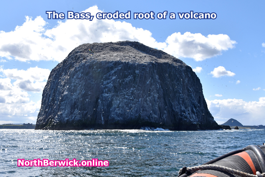 Geology - The Bass Rock in the Firth of Forth